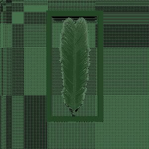 cadre-cycas-herbier-bois_0034_cadre-cycas-27x54_3cm35