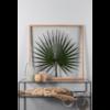 Herbier tropical - Cadre - Atelier Germain