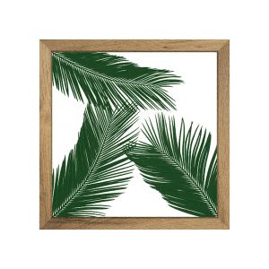 Herbier_0000_cadre-naturel-view-cycas-50x50_6cm15