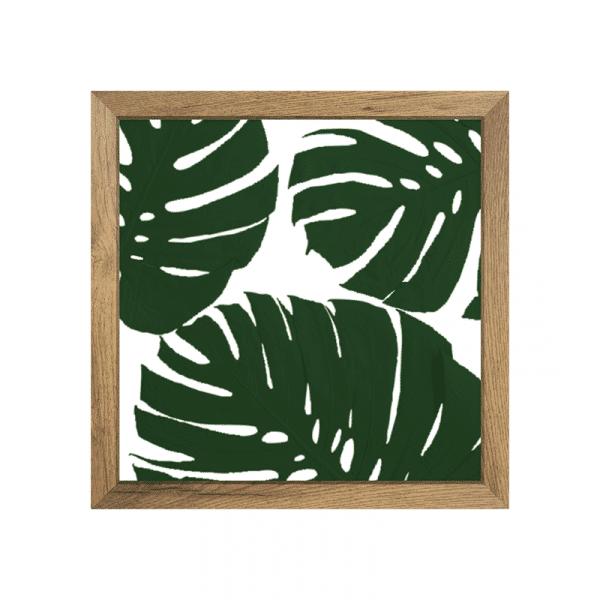 Herbier_0050_cadre-naturel-view-phylo-50x50_3cm22