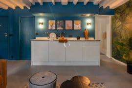 BER23-cuisine-ouverte-sur-la-pièce-à-vivre