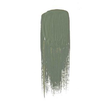 peinture succulente