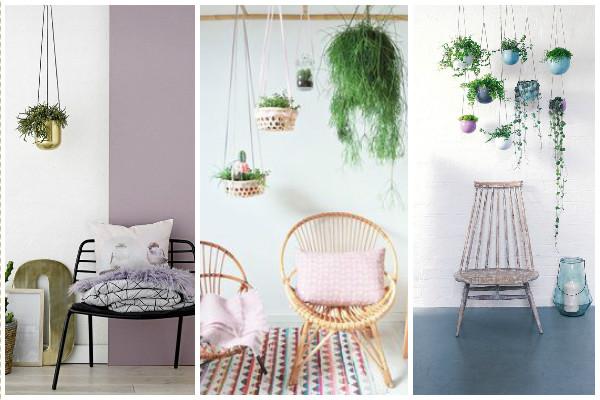 Plantes suspendues fauteuils